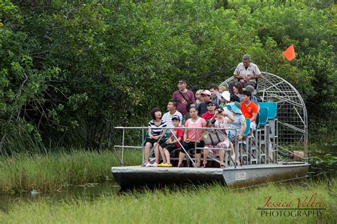 airboat gator park gator park in the everglades washington d c travel