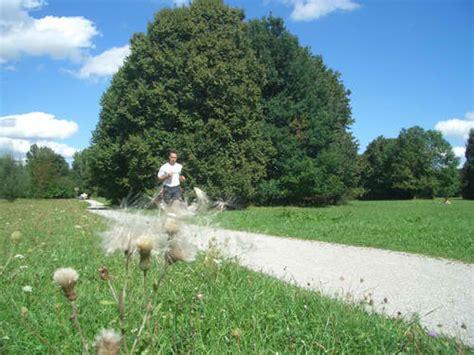 Englischer Garten München Central Park New York by Vs M 252 Nchen Ein Vergleich
