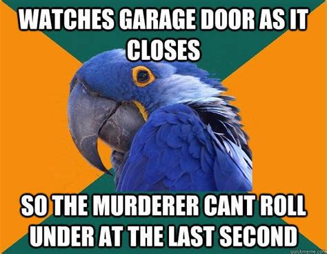 Paranoid Parrot Meme - paranoid parrot says what we are all thinking meme