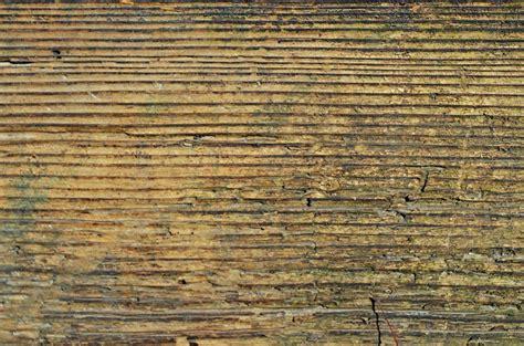 Vans Belakang Coklat gambar pohon lantai bagasi dinding pembentukan