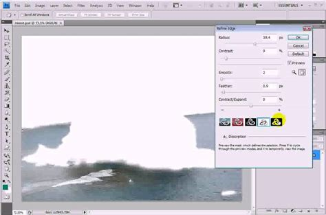 video tutorial adobe photoshop cs4 bahasa indonesia photoshop cs4 refine edge 선택 영역 가장자리 avi doovi