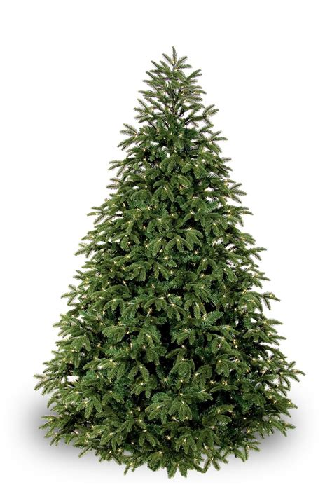 fraser fir prelit tree christmas lights etc