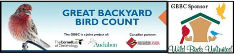 great backyard bird count wild birds unlimited the gbbc is almost here