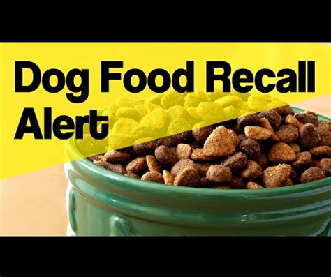 fromm food recall fromm family pet food recalls gold pate food due to excessive amounts of vitamin d