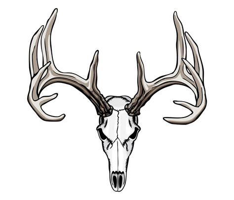 deer horn tattoos tribal deer antler tattoos 1000 ideas about deer skull