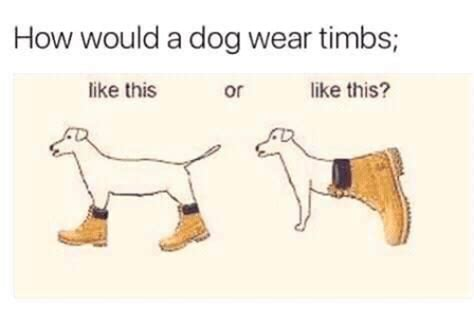Timbs Memes - 25 best memes about timbs timbs memes