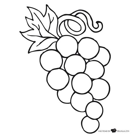 imagenes de uvas en foami imagen de uvas para colorear thekindproject