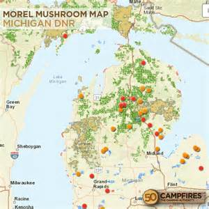 Michigan Morel Map by Did You Know That Morels Are Common At Burn Sites 50