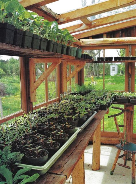 backyard greenhouse backyard greenhouses pinterest