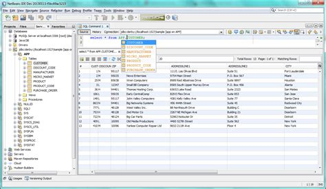 eclipse swing editor netbeans ide databases