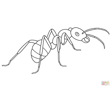 ant coloring pages free printable ant coloring pages coloring home