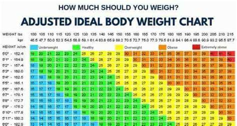 how much should i bench chart how much should you weigh calculate your ideal body weight