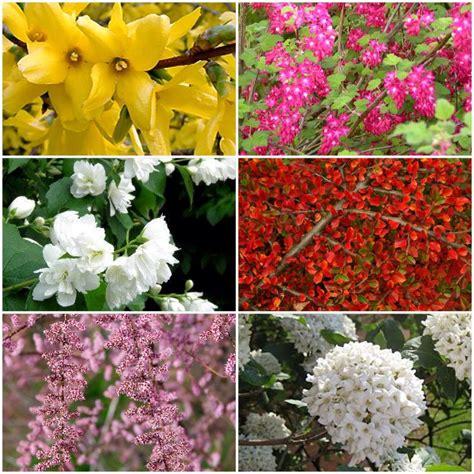Garten 4 Jahreszeiten Losheim by M 252 Ller M 252 Nchehof Gmbh Pflanzen F 252 R Forst Landschaft Und
