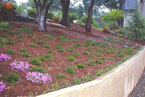 veranda konolfingen landscape fabric for hillside hillside landscape