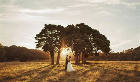 Best Wedding Photographers In The World by The Carousel