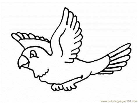 coloring page of birds flying flying parrot drawing clipart panda free clipart images