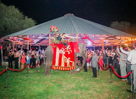 carnival themed wedding a carnival and circus themed wedding reception 183 rock n