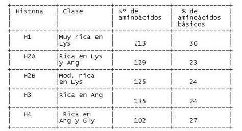 cantidad de cadenas del adn la organizaci 243 n del material gen 233 tico adn en cromosomas
