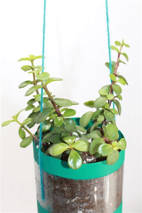 Water Bottle Planter by How To Make Hanging Planters From Recycled Water Bottles