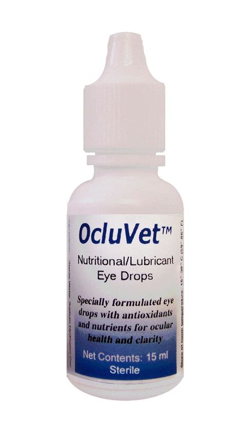 eye drops for dogs 40 best images about shih tzu on dell orefice and 7 year