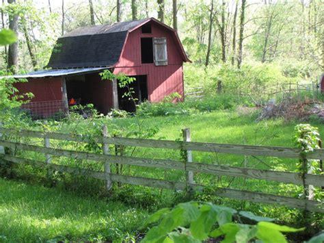 Small Farm At Home Serenity Gulch Farm