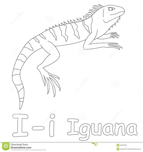 letter i is for iguana coloring page free printable i for iguana coloring page stock illustration