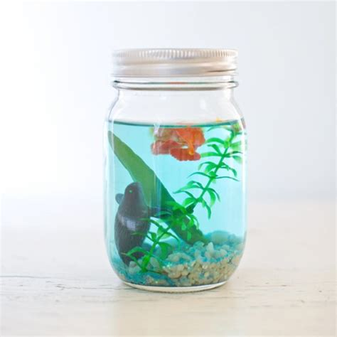 jar crafts 50 diy jar crafts diy projects for