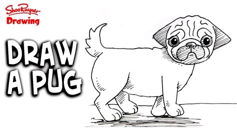 how to draw a pug for how to draw a pug easy step by step for beginners