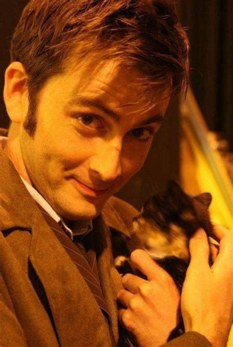 are salt ls bad for cats david tennant almost cats