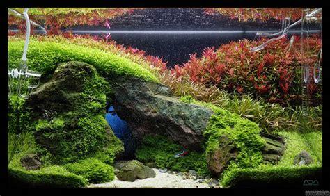 aquascape light calculator a brief crack of light flowgrow aquascape aquarium database