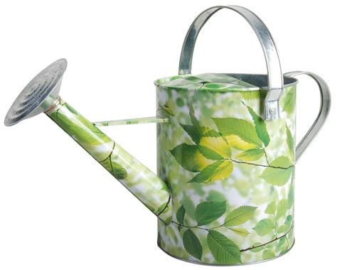 Decorative Watering Cans by Green Leaf Watering Can Gardening Nirvana