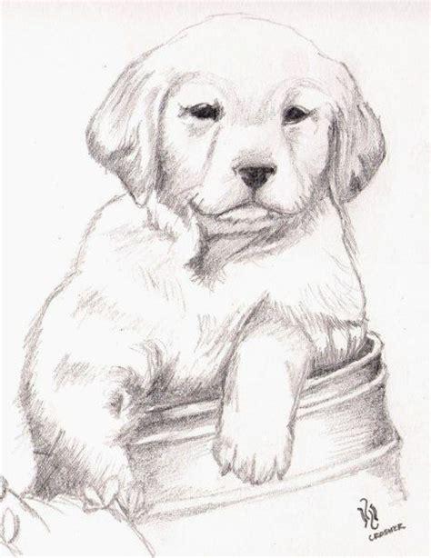 imagenes a lapiz de animales m 225 s de 25 ideas fant 225 sticas sobre mejores dibujos a lapiz