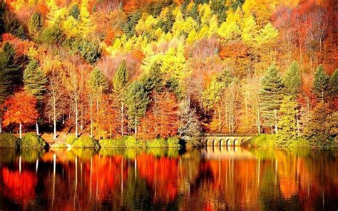 Landscape Pictures Autumn Fall Landscape Wallpapers Wallpaper Cave
