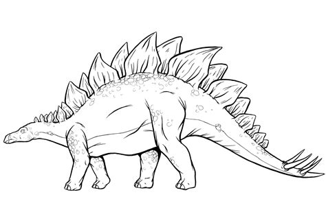 stegosaurus coloring pages dinosaurs pictures and facts