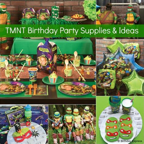 Turtle Themed Birthday Supplies by Plan The Mutant Turtles
