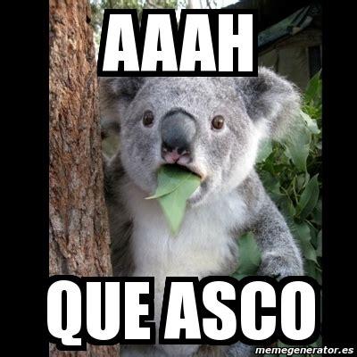 Meme Asco - meme koala aaah que asco 4865408