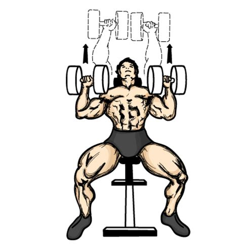 dumbbell incline bench press dumbbell exercise illustrations to help you with your