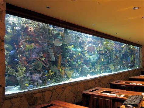 wall aquarium aquarium designs to suit your home ideas 4 homes