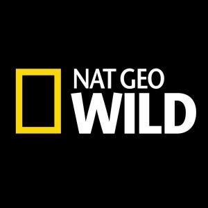 Hoodie Nat Geo Channel tv untamed national geographic and nat geo now on