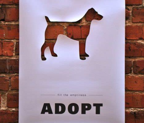 where can i adopt a puppy should you buy a or adopt den herder vet