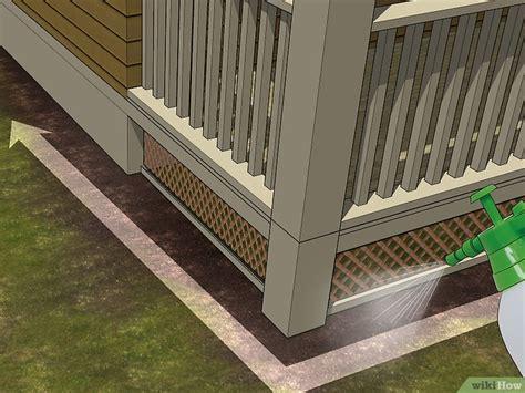 come eliminare un formicaio dal giardino come eliminare le formiche all esterno 11 passaggi