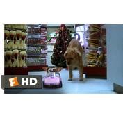 Gremlins 6/6 Movie CLIP  Gizmo To The Rescue 1984 HD