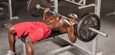 bench press for bodybuilding the six week bench press solution