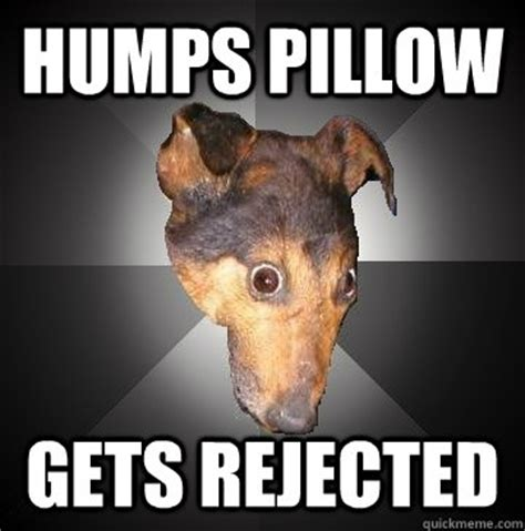 Pillow Meme - humps pillow gets rejected depression dog quickmeme