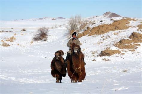 la mongolie en hiver du d233sert de gobi 224 la vall233e de l