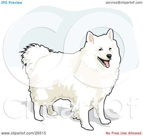 eskimo clipart best photos of american eskimo clip american eskimo