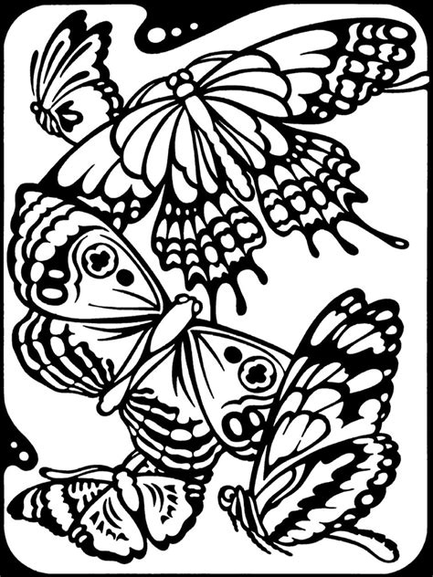 coloring pages of birds and butterflies printables west central research and outreach center