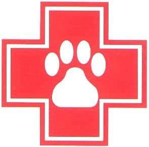 emergency vet emergency vet clinics in indianapolis and indiana