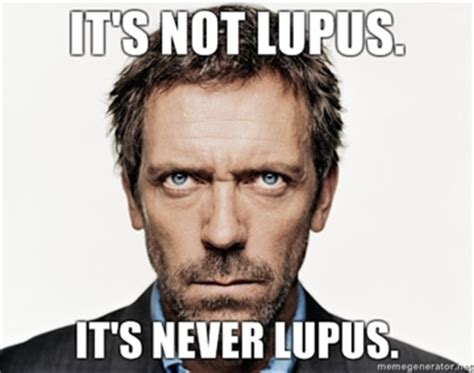 Lupus Meme - house announces final season many people sad but not as