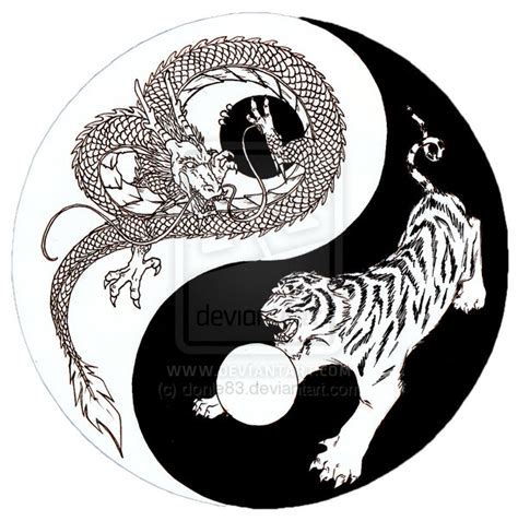 yin yang dragon tattoo designs pictures
